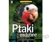 MULTICO PTAKI OZDOBNE Autor Marcin Jan Gorazdowski